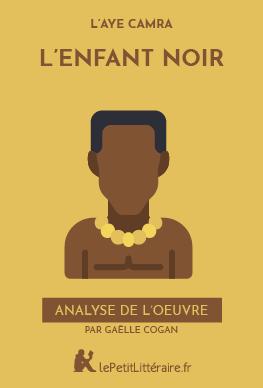 Analyse du livre :  L'Enfant noir