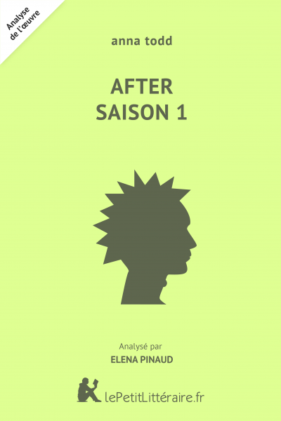 Analyse du livre :  After Saison 1